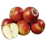 REWE Bio Apfel rot Netz