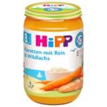 Hipp Bio Karotten mit Reis & Wildlachs 220g