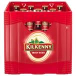 Kilkenny Ale 11x0,5l