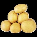 REWE Beste Wahl Speisekartoffeln extra dick vorwiegend festkochend 2,5kg