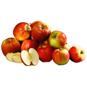 REWE Regional Apfel Elstar rot