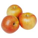 Bauer Regional Apfel Holsteiner 2kg