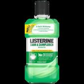 Listerine Tägliche Mundspülung Zahn- & Zahnfleischschutz 500ml