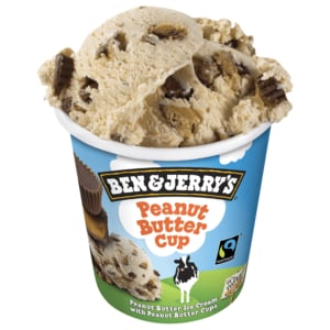 Ben & Jerry's Peanut Butter Cup Eis 500ml