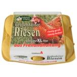 Großenhainer Eier Freilandhaltung 6 Stück