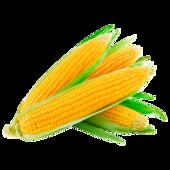 Zuckermais Bio vacuumiert