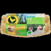 Das Beste vom Lande Frische Bio-Eier Klasse L/M 10 Stück
