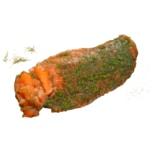 Graved Lachs skandinavische Spezialität, geschnitten