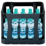 EiszeitQuell Mineralwasser Naturelle 20x0,5l