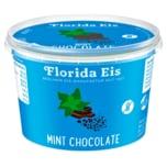 Florida Eis Mint-Chocolate 500ml
