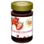 REWE Feine Welt Fruchtaufstrich Erdbeere-Cranberry 250g