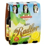 Schussenrieder Natur Radler 6x0,5l