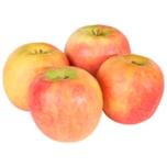 Moog Äpfel 1kg