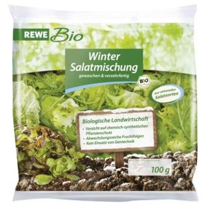 REWE Bio Winter-Salatmischung 100g