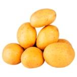 Bauer Küpper Kartoffeln lose