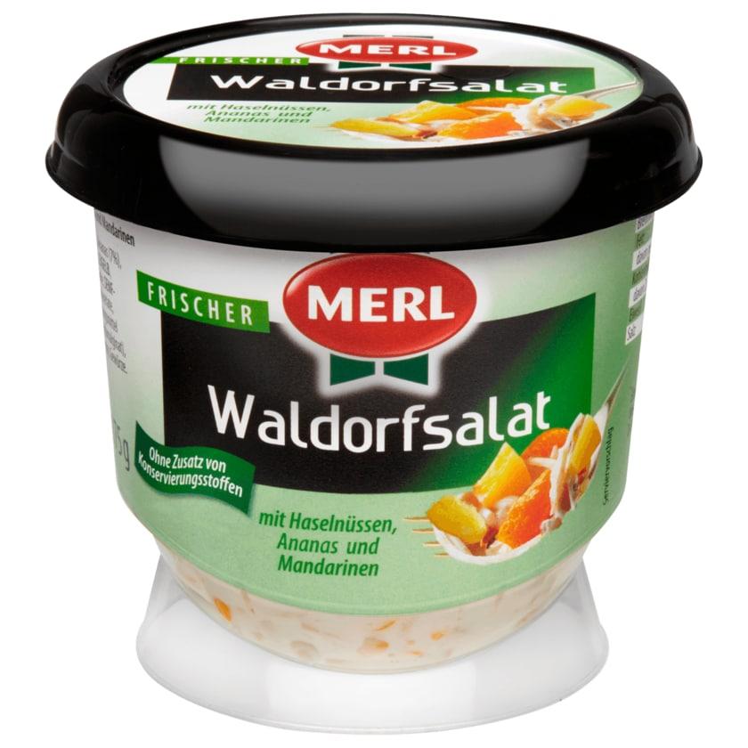 Merl Waldorfsalat 175g