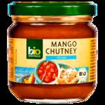 Bio Zentrale Mango Chutney 220g