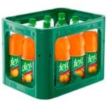 Deit Tropische Früchte 12x1l