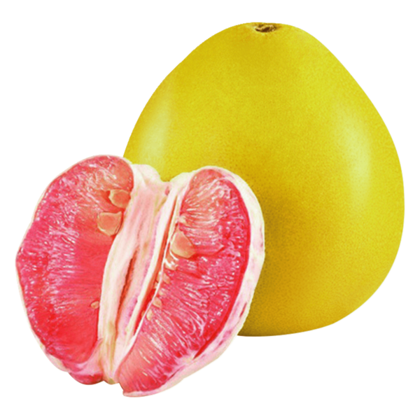 Honey Pomelo Pink
