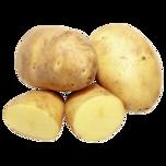REWE Bio Speisekartoffeln festkochend 1,5kg