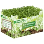 REWE Bio Gartenkresse