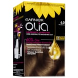 Garnier Olia Dauerhafte Haarfarbe 6.0 Hellbraun