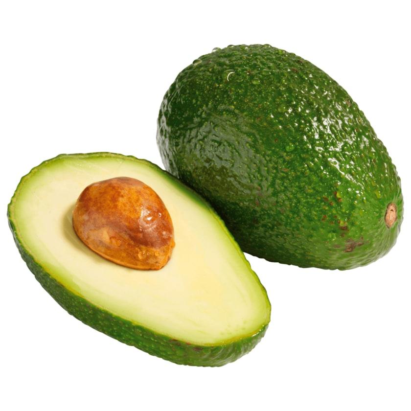 Avocado Bio