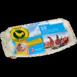 Das Beste vom Lande Eier Freilandhaltung Klasse M-L 10 Stück