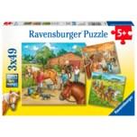 Ravensburger Mein Reiterhof 3x49 Teile