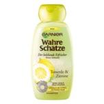 Garnier Wahre Schätze Shampoo Tonerde & Zitrone 250ml