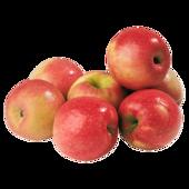 Apfel Pink Lady