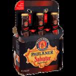 Paulaner Salvator 6x0,33l