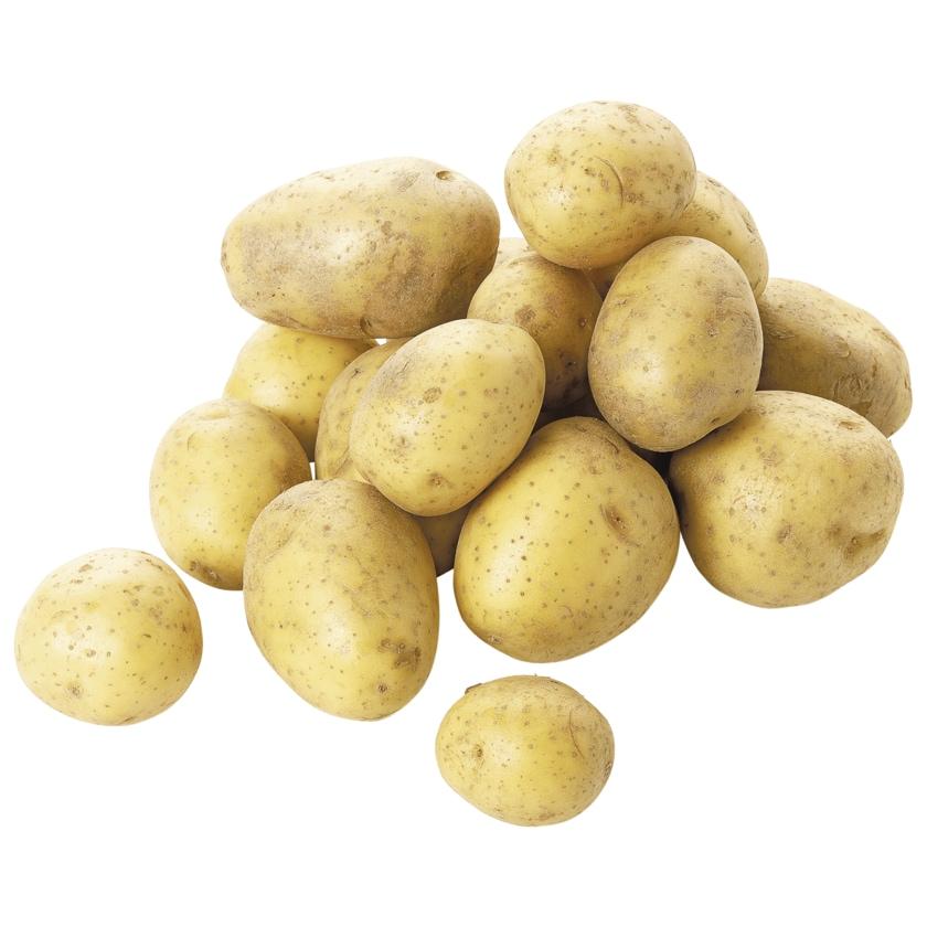 REWE Bio Kartoffeln 1,5kg