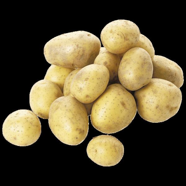 Kartoffel Bio Festkochend