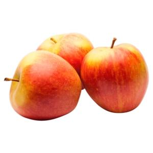 Vistar Tafeläpfel rot Braeburn