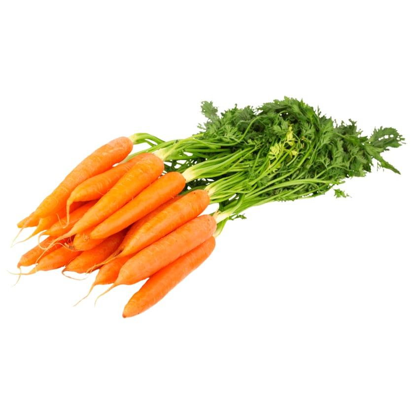 Bund Karotten