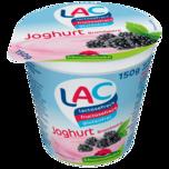 Schwarzwaldmilch Joghurt Brombeere lactose-, fructose-, und glutenfrei