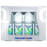 Odenwald Quelle Fresh Apple 12x1l