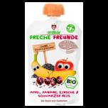 Erdbär Freche Freunde Apfel, Banane , Kirsche & Schwarzer Reis 100g