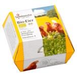 Schönecke Bio Eier 4 Stück