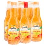 Valensina Frühstücks-Nektar Orange-Mango mit Blütenhonig 6x1l