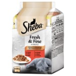 Sheba Fresh & Fine in Sauce Herzhafte Komposition 6x50g