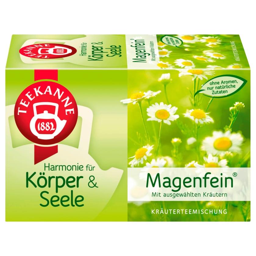 Teekanne Magenfein 40g, 20 Beutel