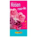 Dekoback Oblaten Rosenblüten Rosa+Lila 7g, 8 Stück