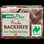 REWE Bio Frische Backhefe 42g