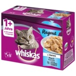 Whiskas 1+ Ragout Fischauswahl in Gelee 12x85g