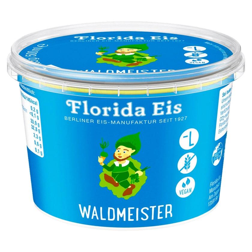 Florida Eis Waldmeister 500ml