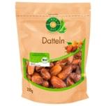 Clasen Bio Datteln 200g