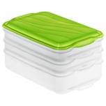 Rotho Foodcenter III 2x0.75l und 1x1.35l Apple Grün