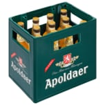 Apoldaer Wanderbursche Naturradler 11x0,5l